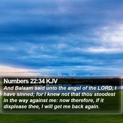Numbers 22:34 KJV Bible Verse Image