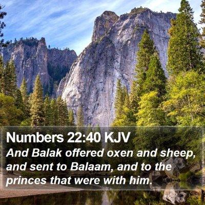 Numbers 22:40 KJV Bible Verse Image