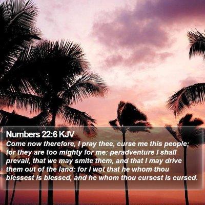 Numbers 22:6 KJV Bible Verse Image