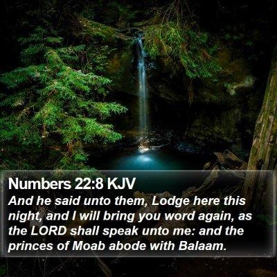 Numbers 22:8 KJV Bible Verse Image
