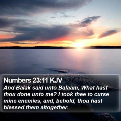 Numbers 23:11 KJV Bible Verse Image