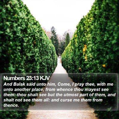 Numbers 23:13 KJV Bible Verse Image