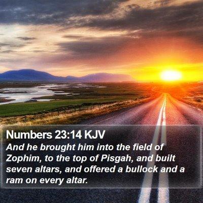 Numbers 23:14 KJV Bible Verse Image