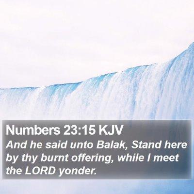 Numbers 23:15 KJV Bible Verse Image