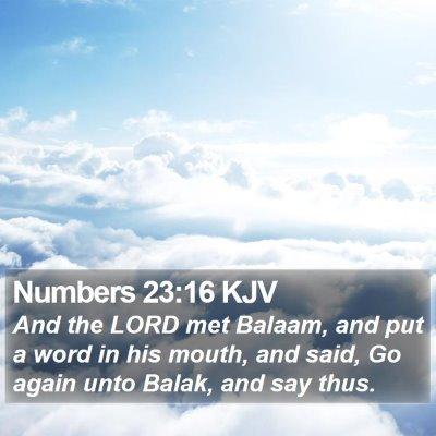 Numbers 23:16 KJV Bible Verse Image