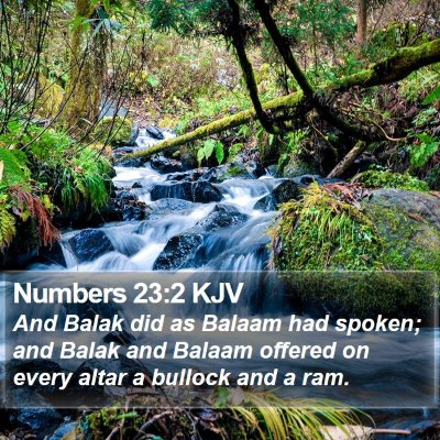 Numbers 23:2 KJV Bible Verse Image