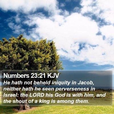 Numbers 23:21 KJV Bible Verse Image