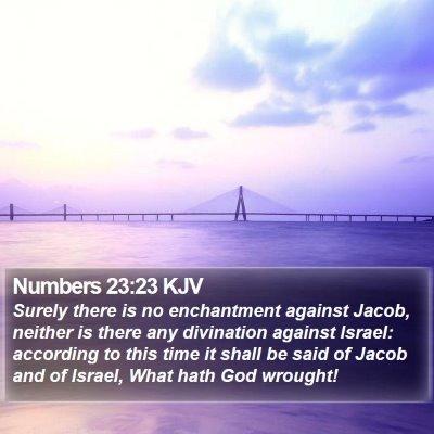 Numbers 23:23 KJV Bible Verse Image