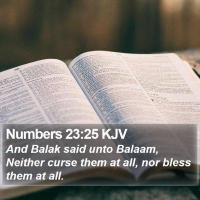 Numbers 23:25 KJV Bible Verse Image