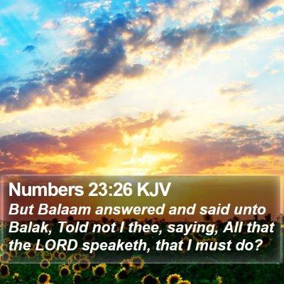 Numbers 23:26 KJV Bible Verse Image