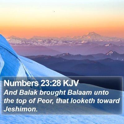 Numbers 23:28 KJV Bible Verse Image