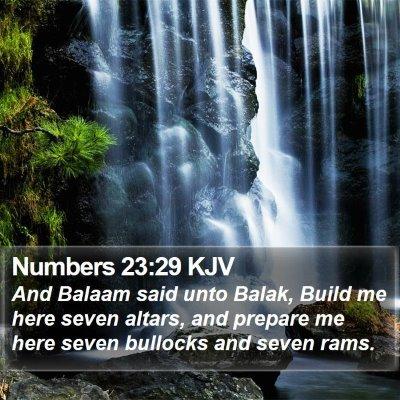 Numbers 23:29 KJV Bible Verse Image