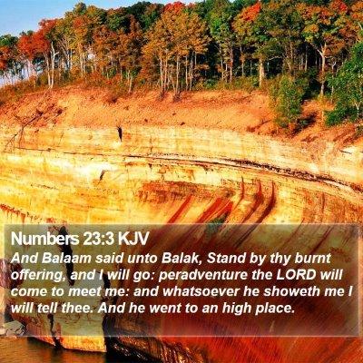 Numbers 23:3 KJV Bible Verse Image