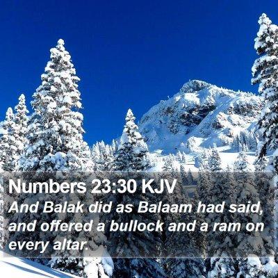Numbers 23:30 KJV Bible Verse Image