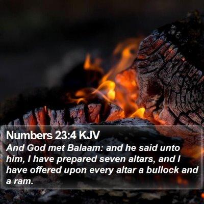 Numbers 23:4 KJV Bible Verse Image
