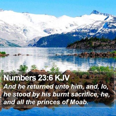 Numbers 23:6 KJV Bible Verse Image