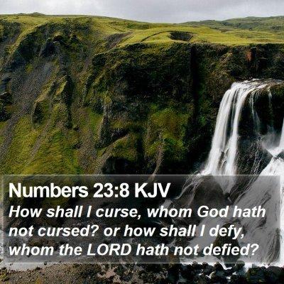Numbers 23:8 KJV Bible Verse Image