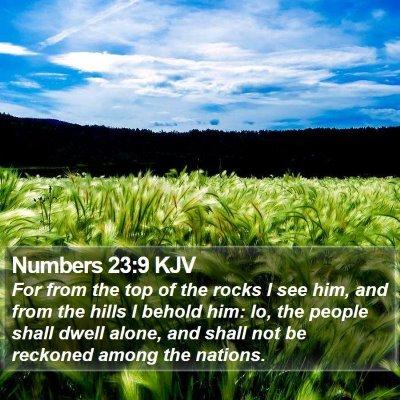 Numbers 23:9 KJV Bible Verse Image