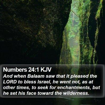 Numbers 24:1 KJV Bible Verse Image