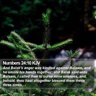 Numbers 24:10 KJV Bible Verse Image
