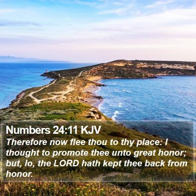 Numbers 24:11 KJV Bible Verse Image