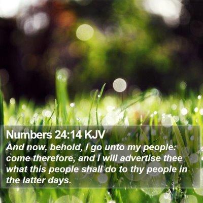 Numbers 24:14 KJV Bible Verse Image