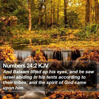 Numbers 24:2 KJV Bible Verse Image