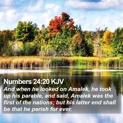 Numbers 24:20 KJV Bible Verse Image