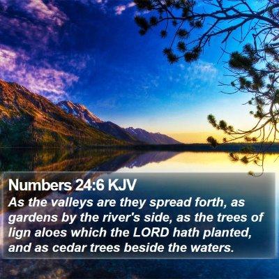 Numbers 24:6 KJV Bible Verse Image