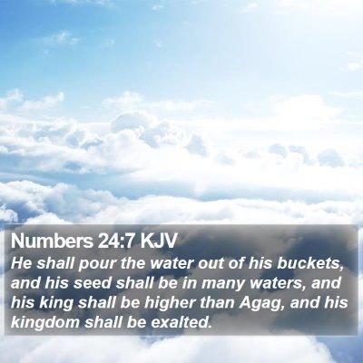 Numbers 24:7 KJV Bible Verse Image