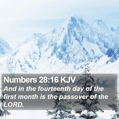 Numbers 28:16 KJV Bible Verse Image