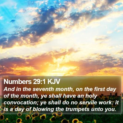 Numbers 29:1 KJV Bible Verse Image