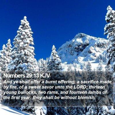 Numbers 29:13 KJV Bible Verse Image