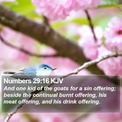 Numbers 29:16 KJV Bible Verse Image