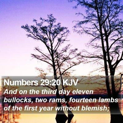 Numbers 29:20 KJV Bible Verse Image
