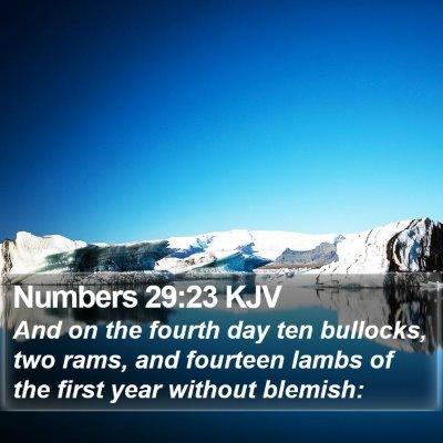 Numbers 29:23 KJV Bible Verse Image