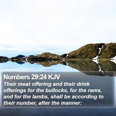 Numbers 29:24 KJV Bible Verse Image