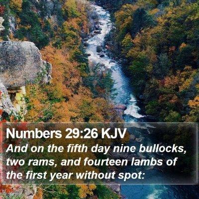 Numbers 29:26 KJV Bible Verse Image