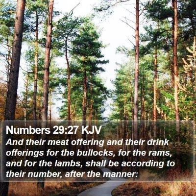 Numbers 29:27 KJV Bible Verse Image
