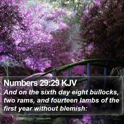 Numbers 29:29 KJV Bible Verse Image