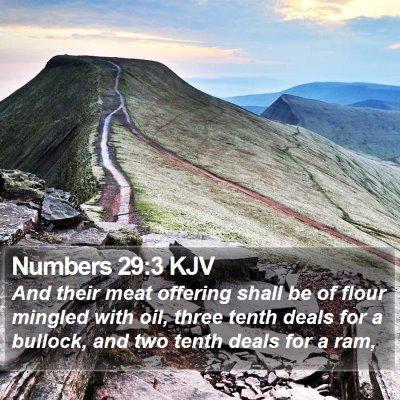 Numbers 29:3 KJV Bible Verse Image