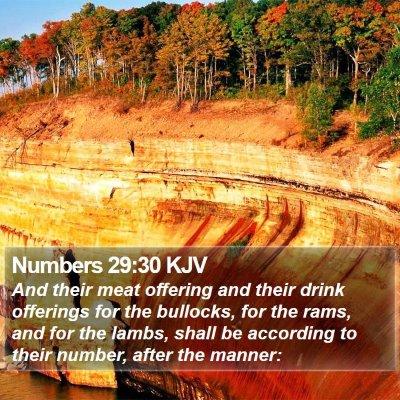 Numbers 29:30 KJV Bible Verse Image