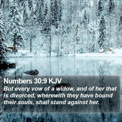 Numbers 30:9 KJV Bible Verse Image