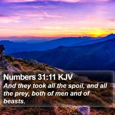 Numbers 31:11 KJV Bible Verse Image