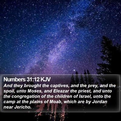 Numbers 31:12 KJV Bible Verse Image