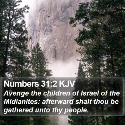 Numbers 31:2 KJV Bible Verse Image