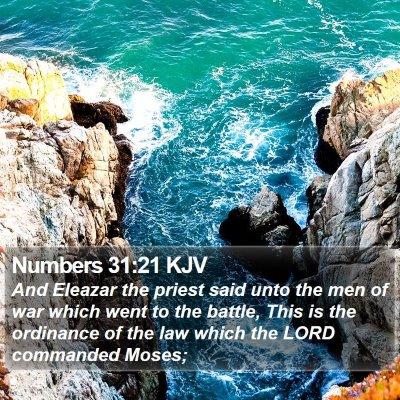 Numbers 31:21 KJV Bible Verse Image