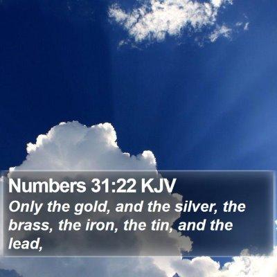 Numbers 31:22 KJV Bible Verse Image
