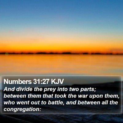 Numbers 31:27 KJV Bible Verse Image