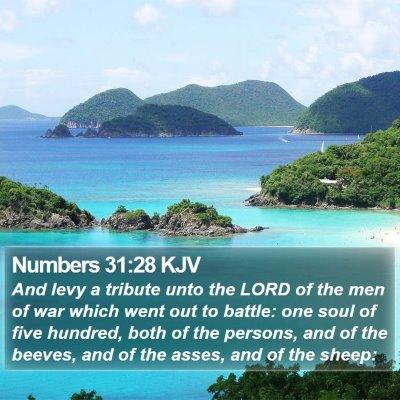 Numbers 31:28 KJV Bible Verse Image